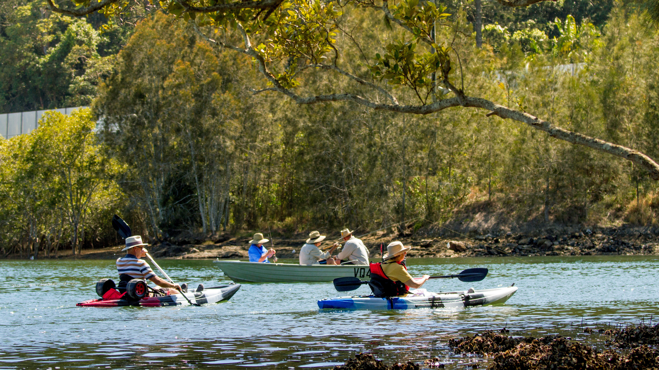 Image of people kayaking on the Brunswick River in Brunswick Heads NSW